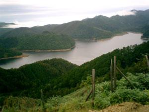王滝村の林道から湖を眺める