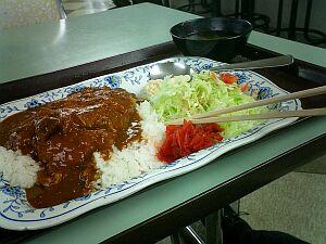 またもや学食でハヤシカツライス。カロリー命って感じだなぁ。