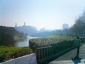 皇居付近の首都高料金所から最高裁のほうを見渡した風景。観光客多し。