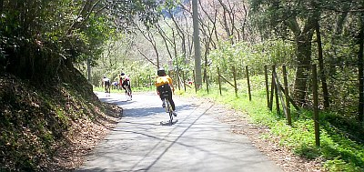 上り坂練習用の、車がめったに来ない小道を走り回る。最後は湘南平に登る。