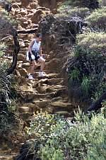 ツアーの人からキナバル山の写真が来たのでスキャンした。下りで腰が引けてるのが良く分かる(w