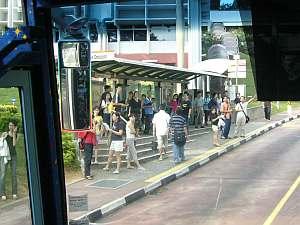 大学の中のバス路線のバス停。