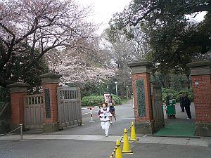 学習院の正門を抜けて目白通りを目白駅方面へ。