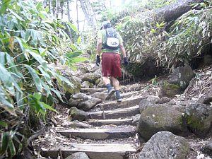 キナバルの登りを髣髴とさせる箇所。