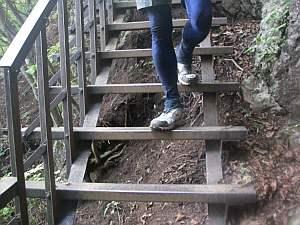 雨だと滑り落ちそうな階段。