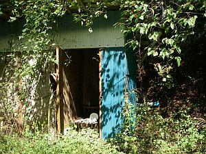 なぜか途中にトイレ小屋もあります。