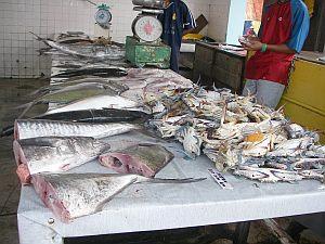 街中の魚屋さんは常温保存で売ってます。