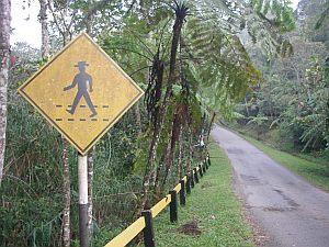 トレイル横に立っていた標識。帽子が特徴的。
