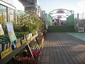 松坂屋の屋上に上るも祠は無しでがっかり。実は屋上の祠マニアだったりする(笑)