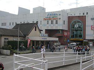 この時しか使わない大雄山駅。