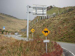 牛に注意、の標識は国土交通省によるものか?