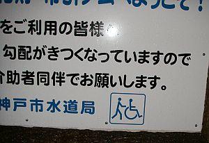 車椅子と押す人のコラボは初めて。