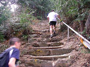 下りの途中に、こんな登りもある。