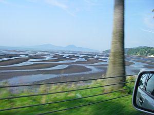 大勢の干潟マニアが撮影に集まるとのこと。
