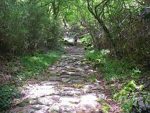 石がごろごろ、ゆっくり散歩したいところ。