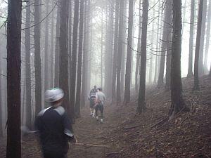 霧が深くなって幻想的な下山。