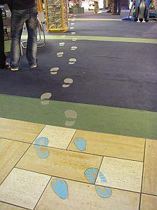 クライストチャーチのトラベルインフォに、なぜかキウイの足跡が。地元民じゃないのか(笑)