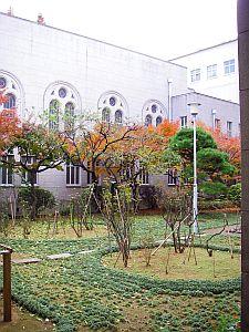 中庭も紅葉。