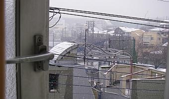 屋根が白い!