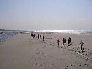 砂浜が途切れて、戻ってきました(笑)