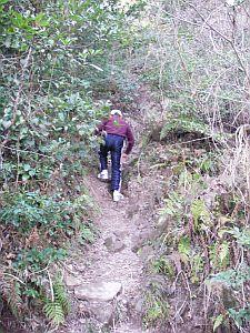 キナバル山を髣髴させる坂。