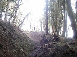 ハコネの神山を髣髴させるV字路。