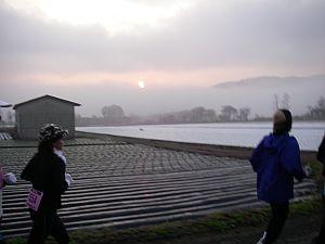 朝日を見ながら走る。