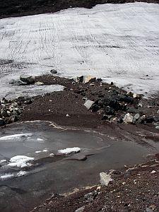 雪解け水がたまってる、とても冷たい水場。