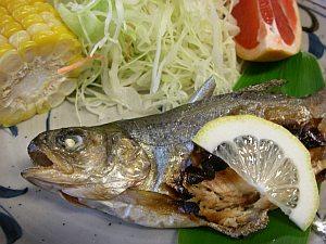 鮎が美味しい。