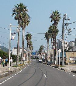 この道路はちょいと西海岸っぽい(笑)