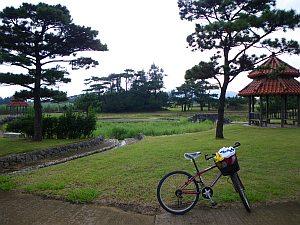 よく整備された公園。