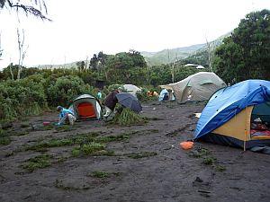 雨で濡れてしもたテント。