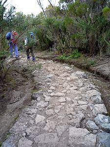 下山道には、なぜか石畳も出てきた。