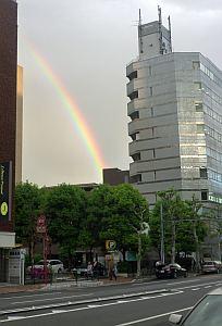 虹を見たよ!