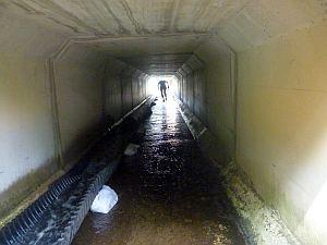 こっちの水道管が綺麗。