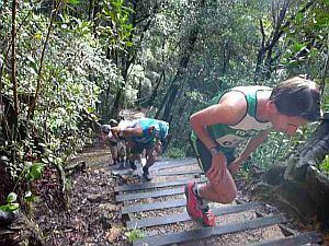 トップは走って階段を上る。