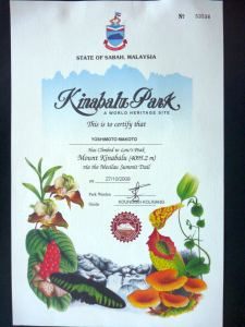 マシラウルートからの登頂証明書。