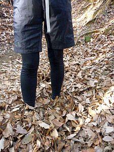 落ち葉に埋もれまくり
