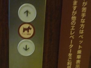 ペット用のエレベータ