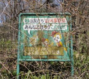 リスと鳥のコラボは珍しい。