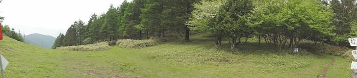 防火帯のあたりはいい感じの草原が広がる。