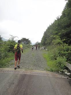 林道と舗装路の犬越路