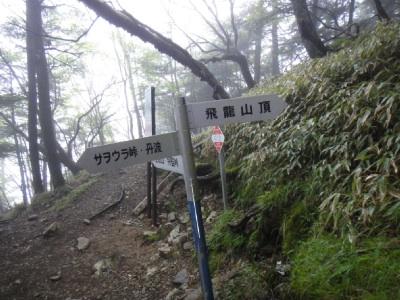 まっすぐ行けばいいところ、右に曲がる(>_<)