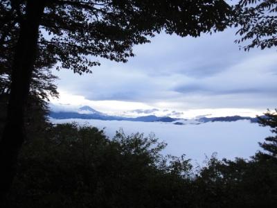 富士山が見えた。