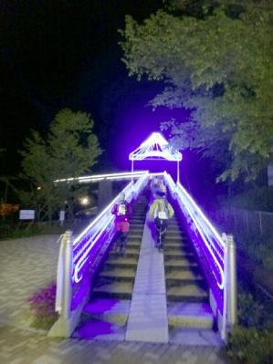 天国への階段ならぬ、エイドへの階段