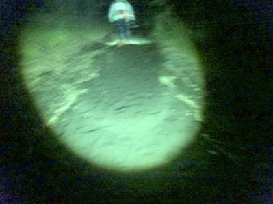 演習場の中のトレイルは砂礫地帯
