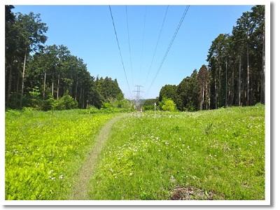 ココ、送電線の巡視路は、雑誌に掲載禁止で残念。