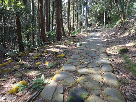 一族の墓に通じる歴史ある道