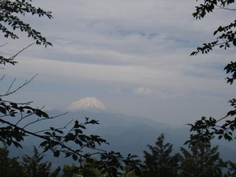 富士山がよく見えた。
