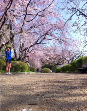 まだ桜が残ってた\(^o^)/